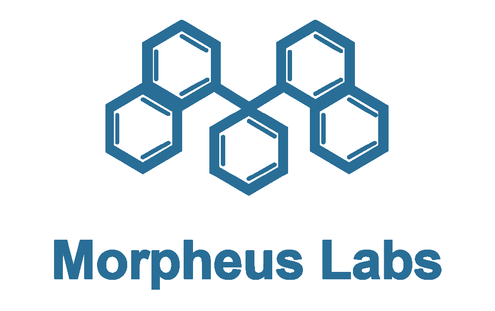 morpheus-labs-partners-with-waves-platform-to-combine-waves'-tech-with-its-bpaas